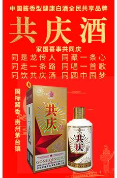 陕西邓功酒业有限公司